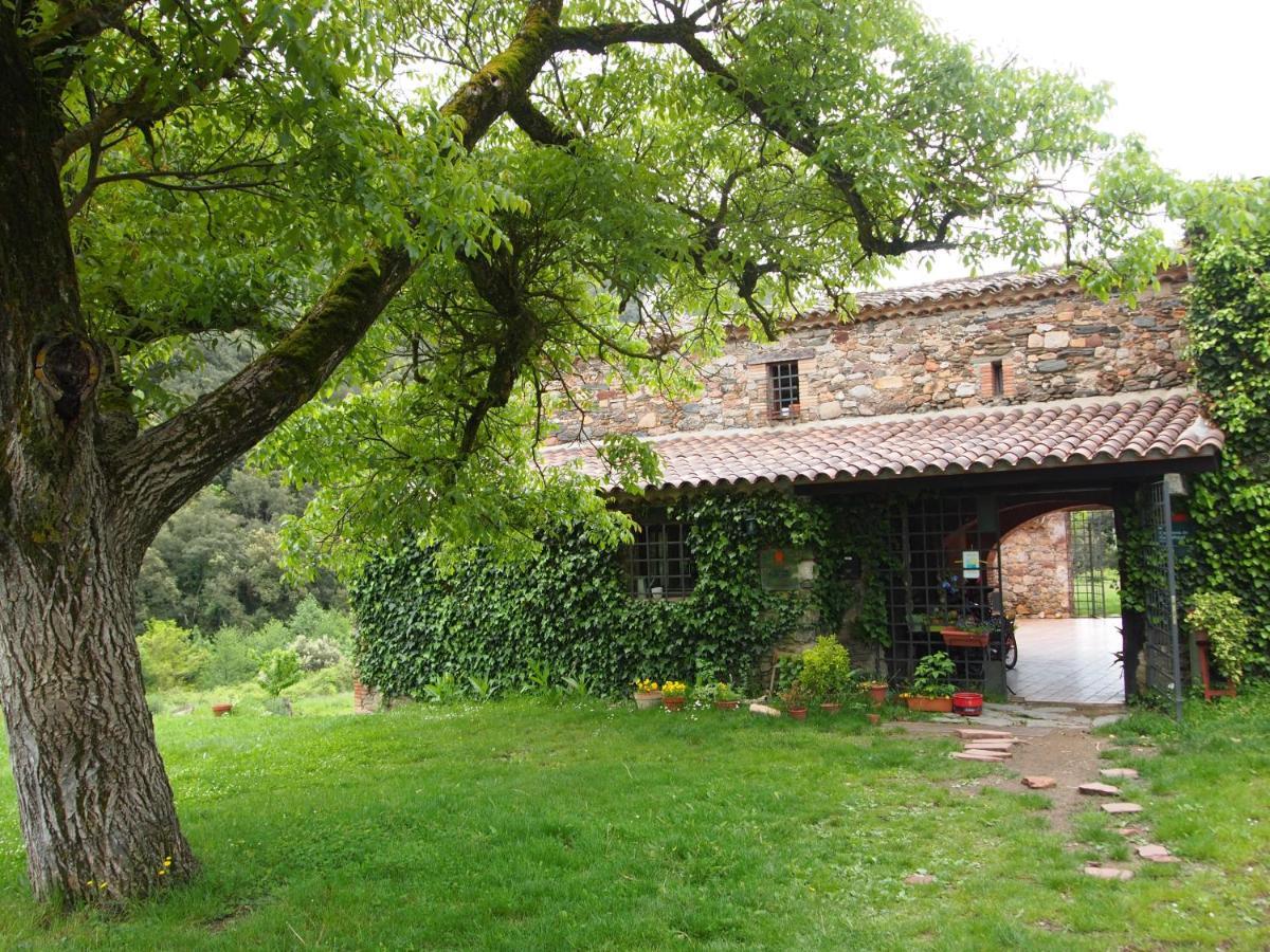 Hostels In Vilanova De Sau Catalonia