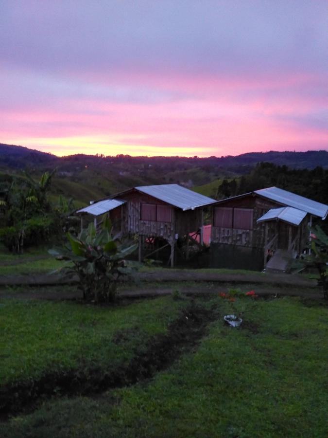 Guest Houses In Mona Puntarenas