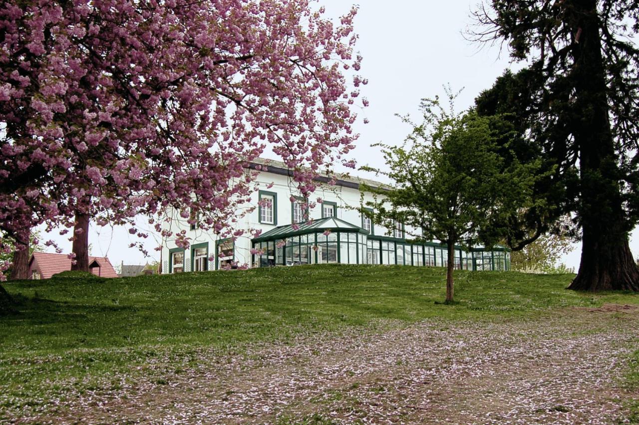 Hotels In Quiestède Nord-pas-de-calais
