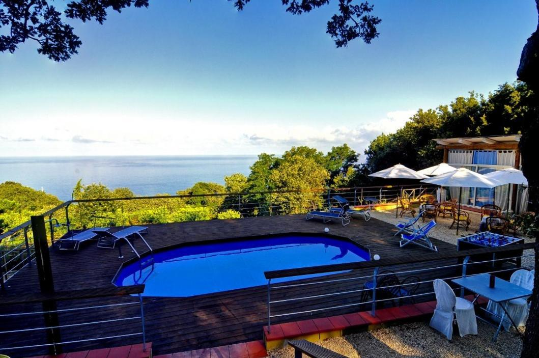 Bed And Breakfasts In Amantea Calabria