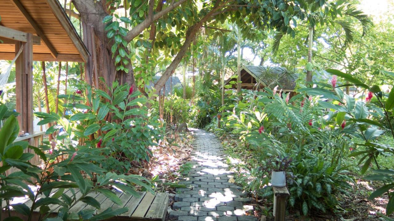 Hotels In Gravel Bay Roatan Island