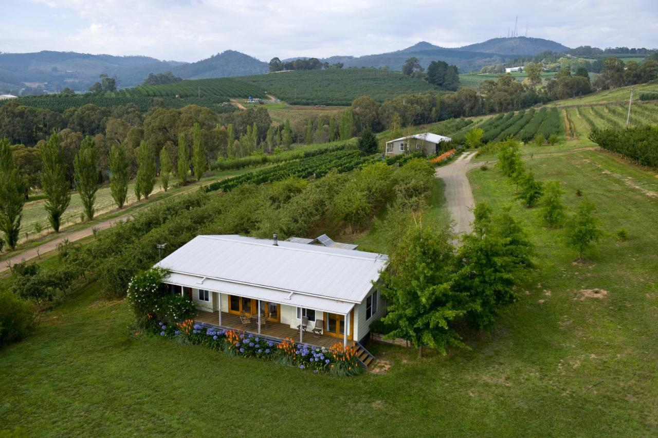 best dating orange nsw winery
