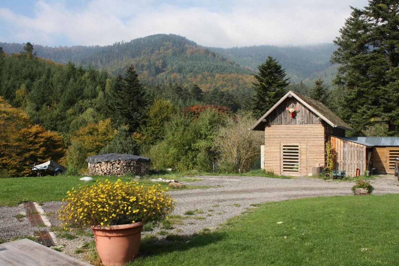 Guest Houses In Neuviller Alsace