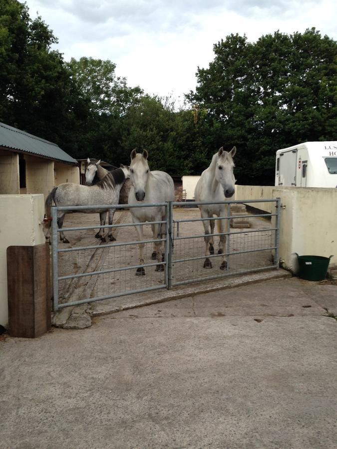 Bed And Breakfasts In Rhondda Glamorgan