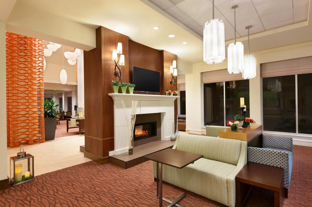 Enchanting Hilton Garden Inn Logan Airport Frieze - Brown Nature ...