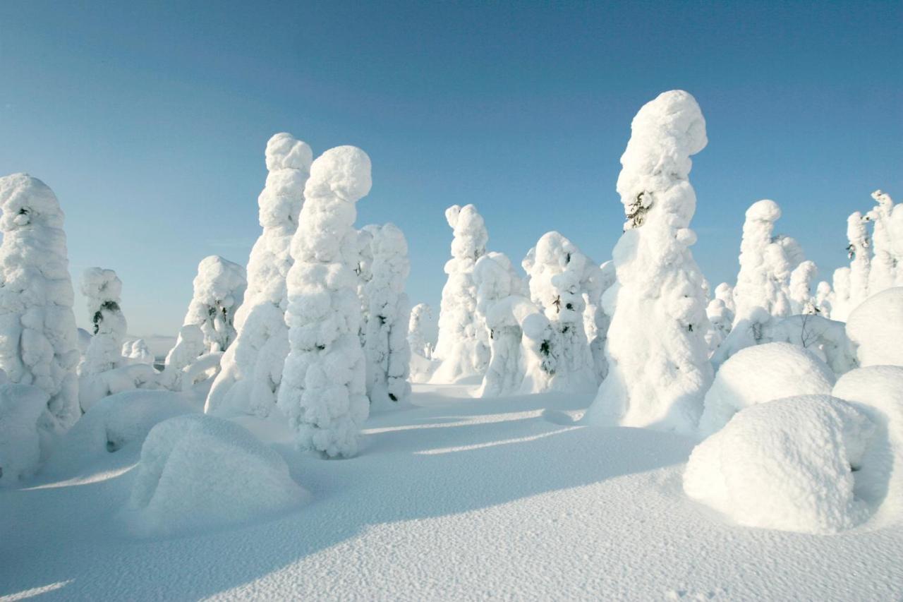 hotelli suomutunturi, finland - booking