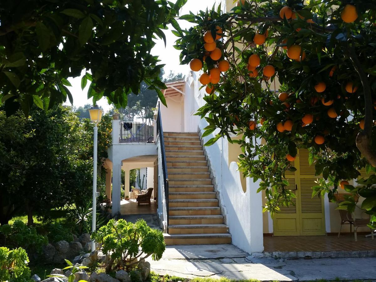Guest Houses In Banyalbufar Majorca