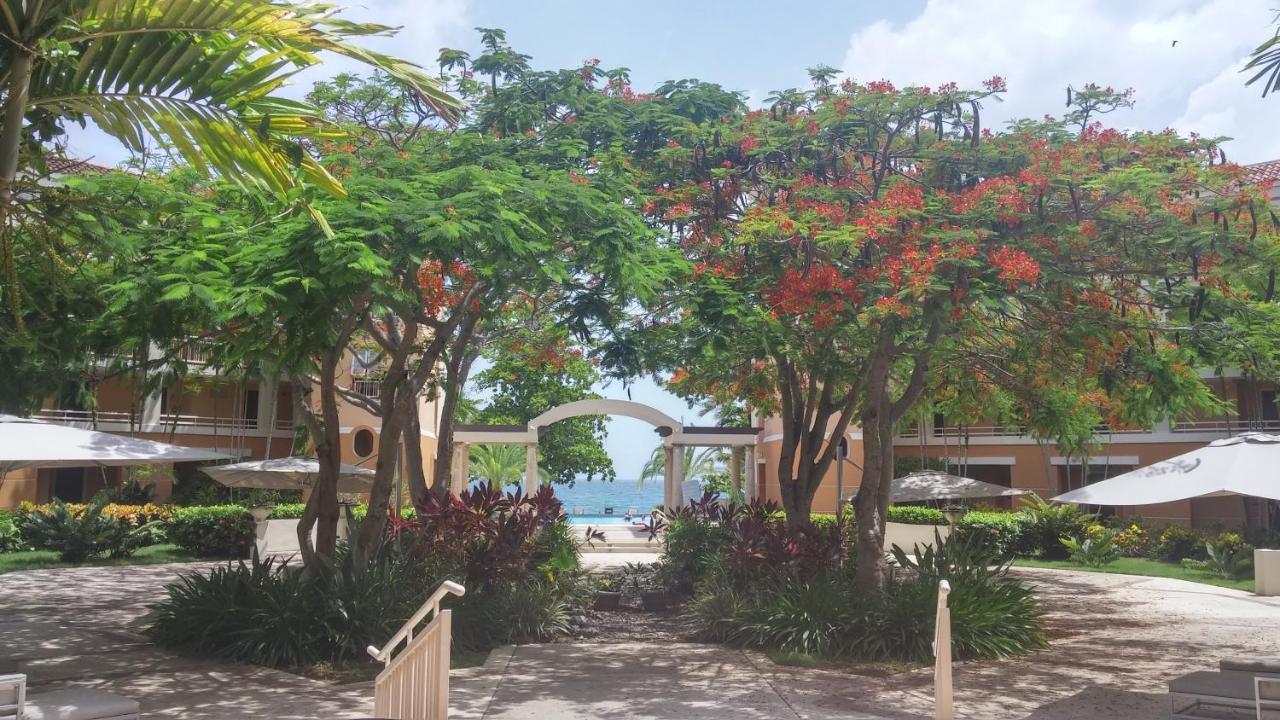 Hotels In Moca
