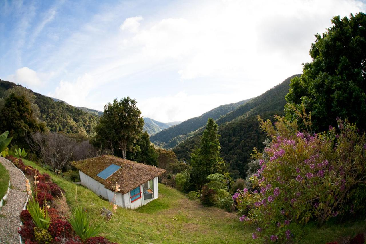 Bed And Breakfasts In Chimirol San José