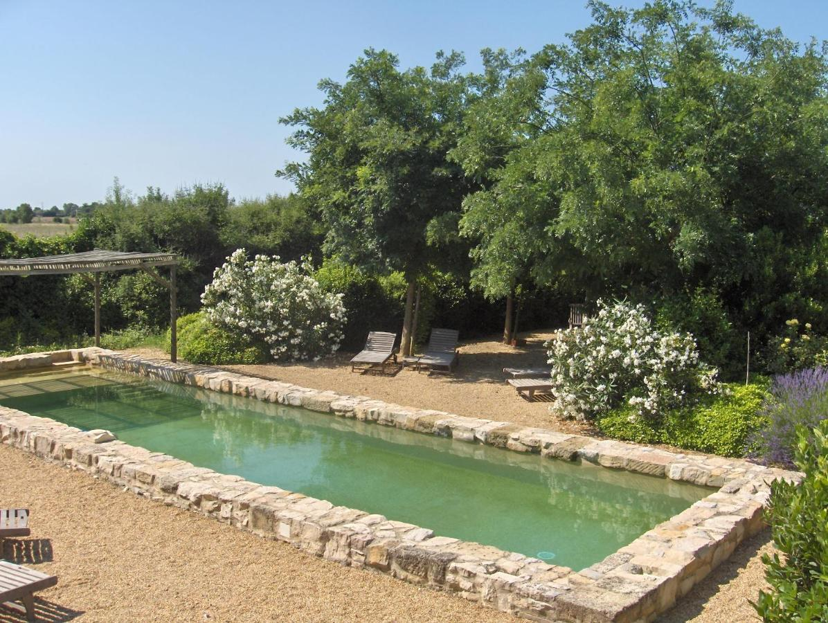 Bed And Breakfasts In Port Camargue Languedoc-roussillon