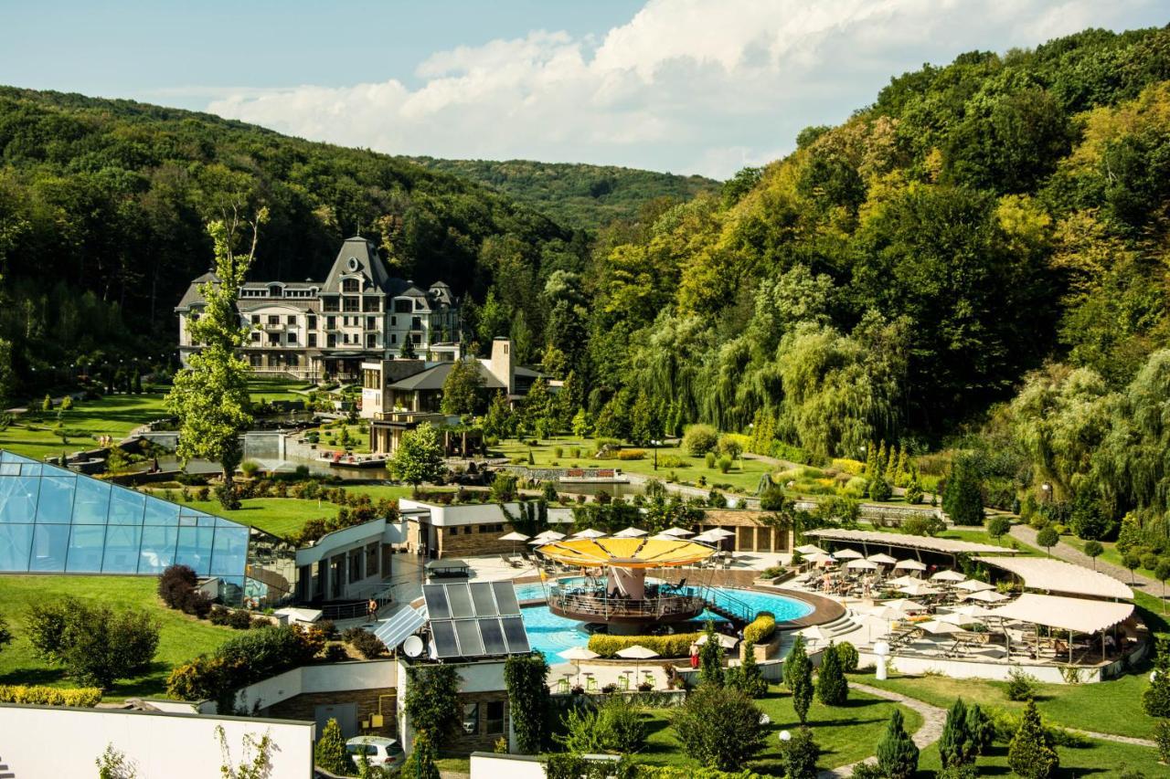 СМИ: Пэрис Хилтон покупает курорт на Закарпатье (фото 1)