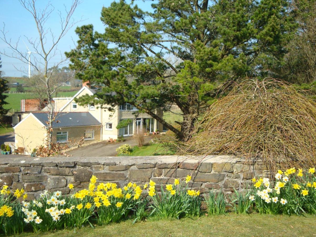 Guest Houses In Robeston Wathen