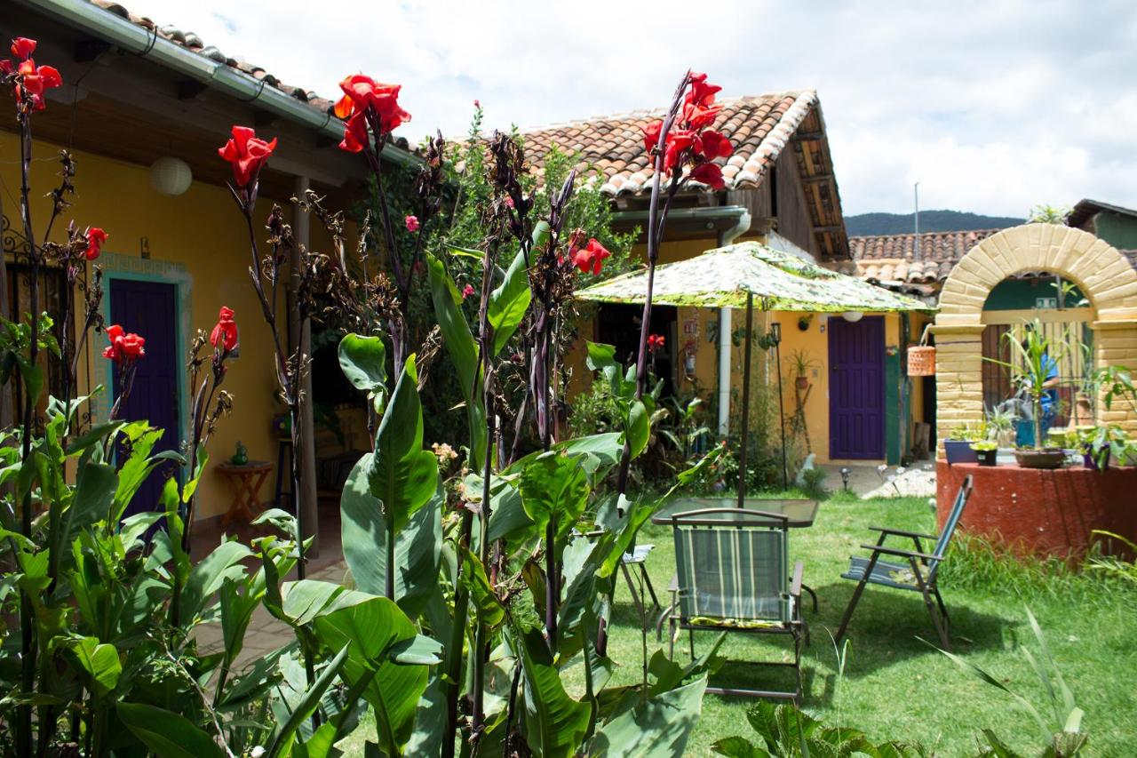 Bed And Breakfasts In Zinacantán Chiapas