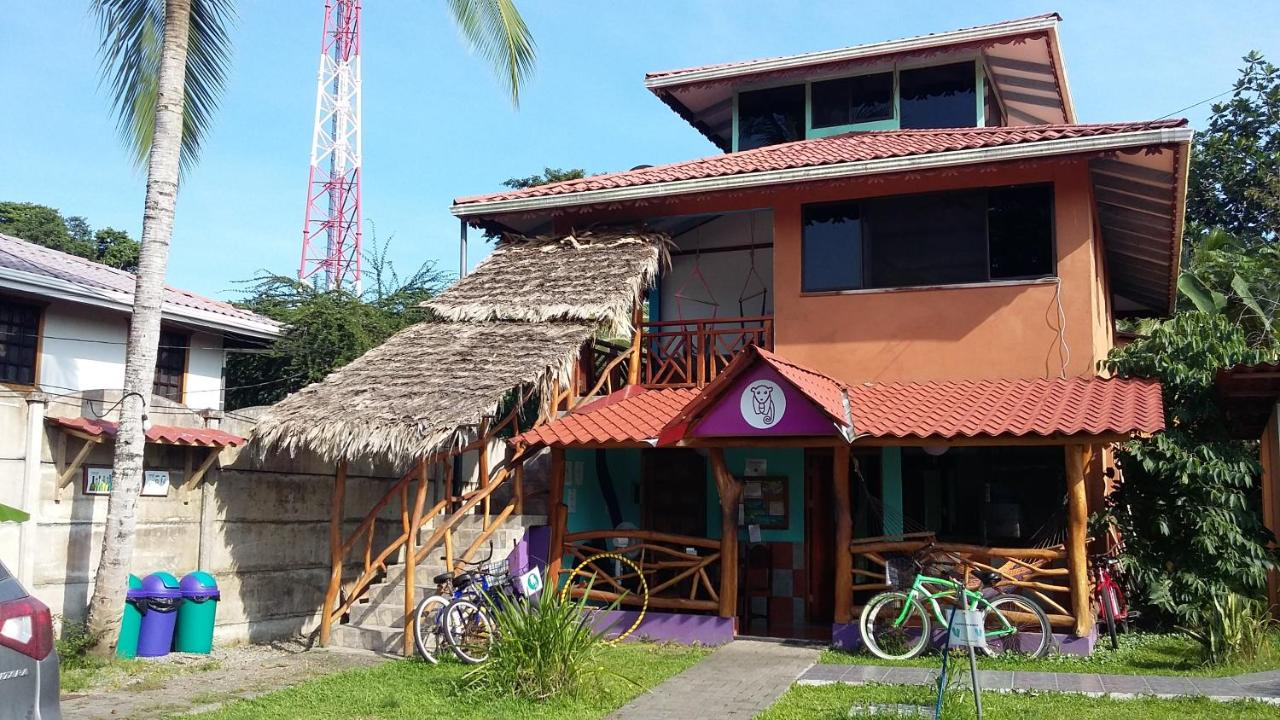 Hostels In Cocles Limon