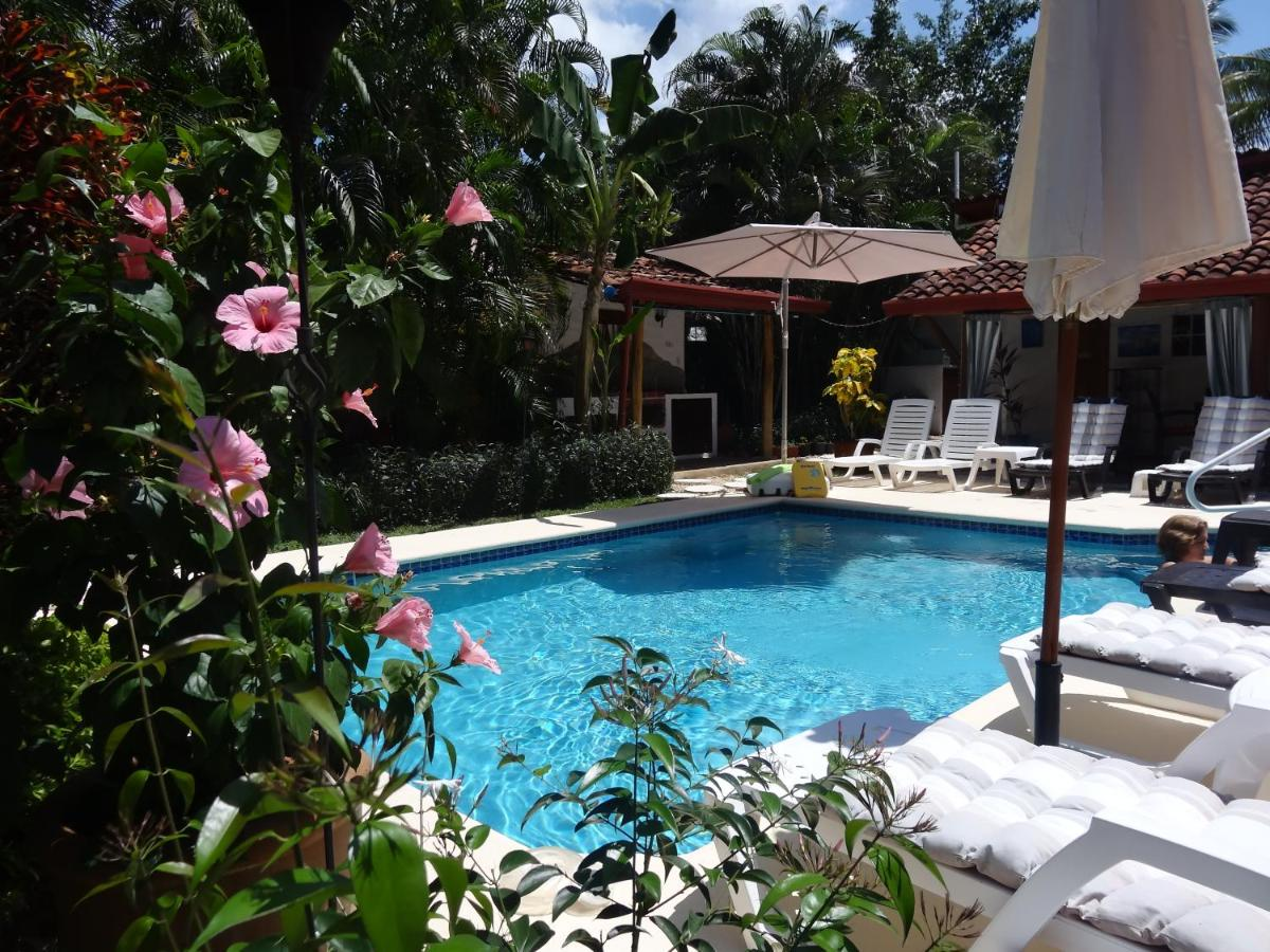 Bed And Breakfasts In El Valle Cocle
