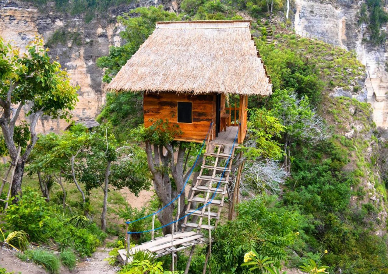 Hasil gambar untuk Tree House Molenteng