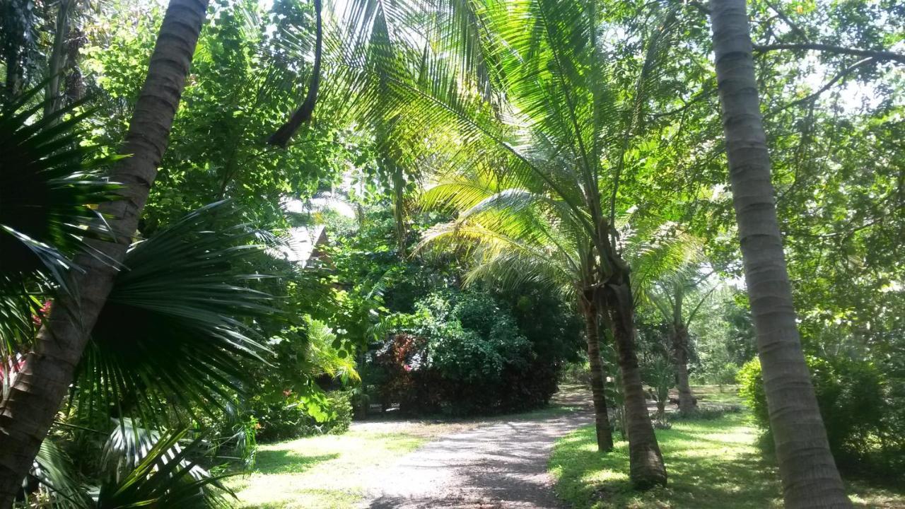 Hostels In Las Mesas Guanacaste