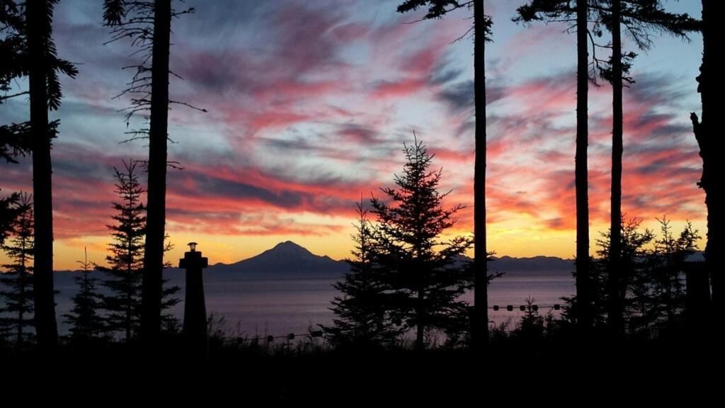 Bed And Breakfasts In Kenai Alaska