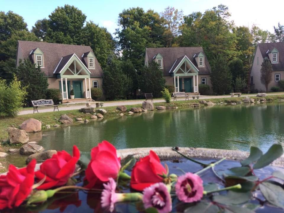 Hotels In Pulaskiville Ohio