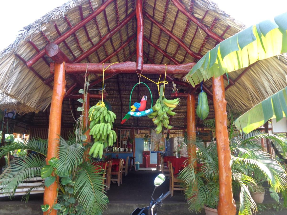 Guest Houses In Ometepe