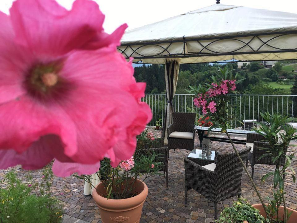 Bed And Breakfasts In Anzù Veneto
