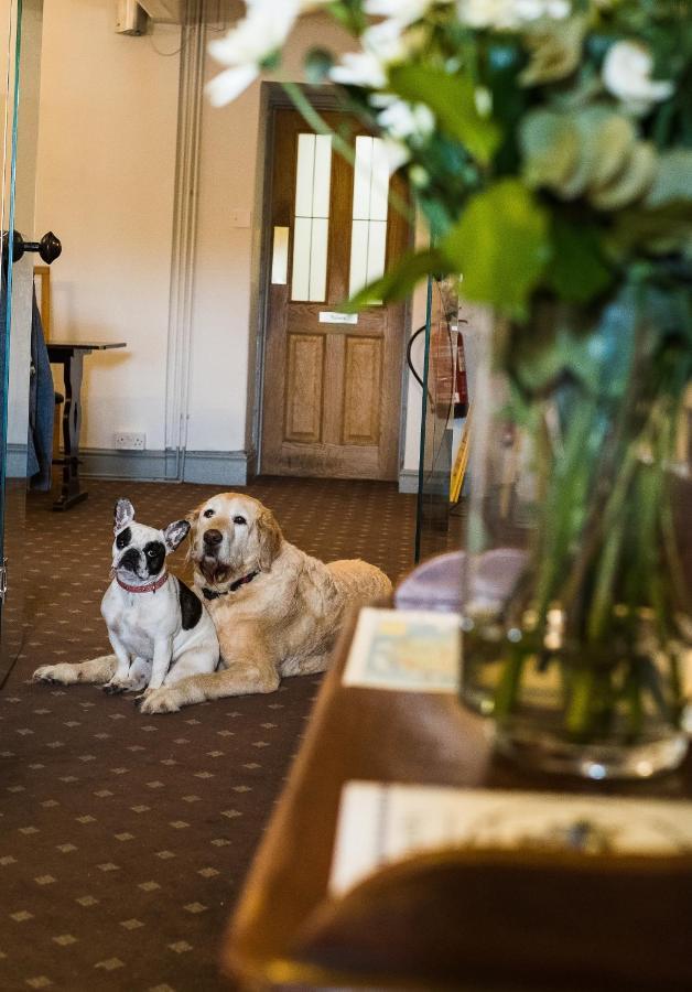 Hotels In Rhoose Glamorgan