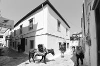 Mastoris Mansion