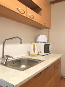 A kitchen or kitchenette at 2bedroom Flatel near Letna Park