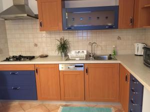 Kuhinja oz. manjša kuhinja v nastanitvi Apartment Nova Gorica - Nočitve Falco