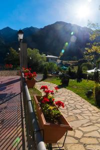 Vista general d'una muntanya o vistes d'una muntanya des de l'aparthotel