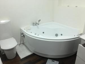 A bathroom at Comfortable and well-appointed modern apartment