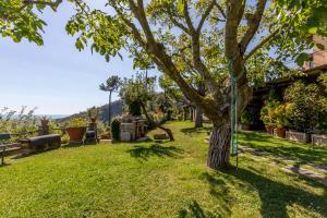 A garden outside Casa Cristina Picco Del Falco