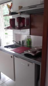 Cuisine ou kitchenette dans l'établissement Studio