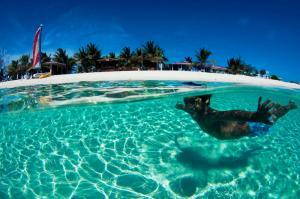 Bohio Dive Resort