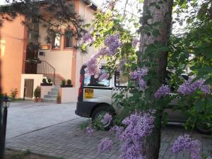 Vila Silia