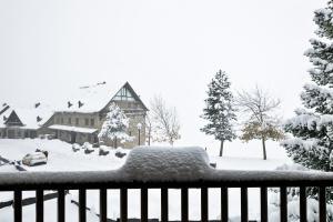Baqueira Apartamentos Cota 1700 a l'hivern