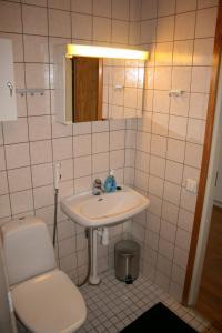 Salle de bains dans l'établissement One bedroom apartment in Pori, Antinkatu 31 (ID 11025)
