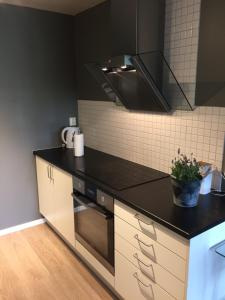 A kitchen or kitchenette at Apt. Grünerløkka SBG13