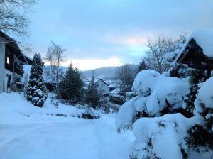 Ferienwohnung Anita Müller during the winter