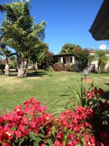 Le bungalow des bougainvilliers