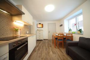Kuhinja oz. manjša kuhinja v nastanitvi Danijela & Gregor