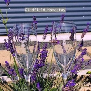 Gladfield Homestay