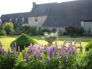 A garden outside Le Manoir de Champfreau