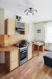 A kitchen or kitchenette at ALLiS-HALL One-Bedroom Apartment at Radischeva 33