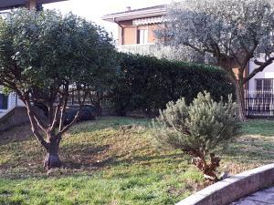 A garden outside Villa Michelangelo
