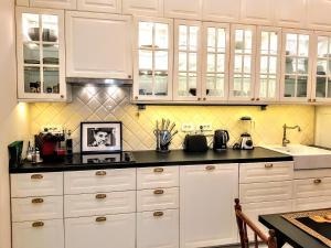 A kitchen or kitchenette at VIP Residence Budapest Riverside