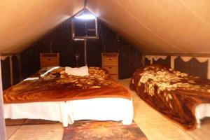 Ali Bedouin camp with tour