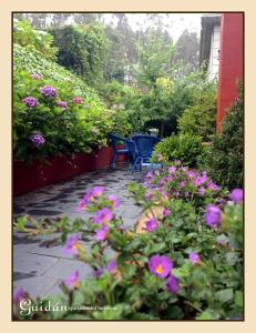 A garden outside Apartamento Guidan