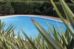 The swimming pool at or near Casa Mafalda