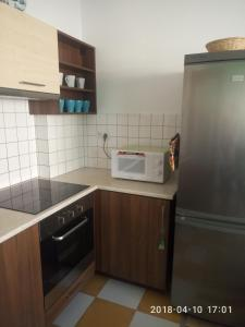 A kitchen or kitchenette at Klapkova Apartment